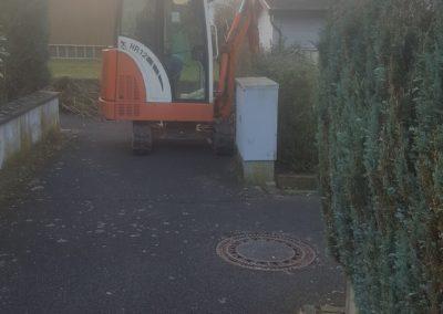 Büsche ausbauen